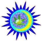 night-sun-w_leaf
